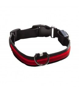 COLLAR LUMINOSO EYENIMAL NUM AXES ROJO